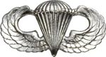 No-Shine Badge Parachutist Army Insignia